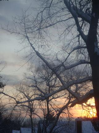 Wintermorn2