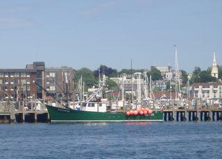 Newport35