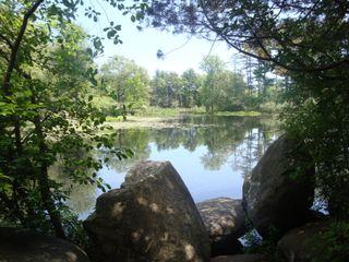 Pond18