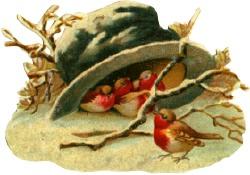 Birds-top-hat