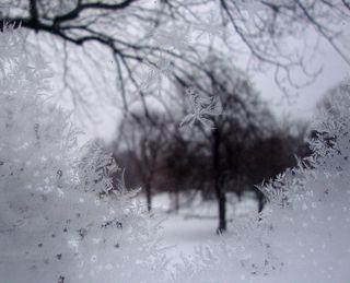 Frostywindow3