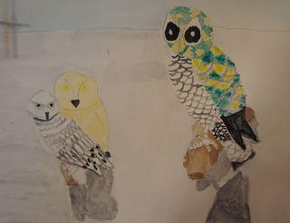 Owlpainting