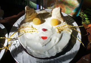 Cat cakes 3