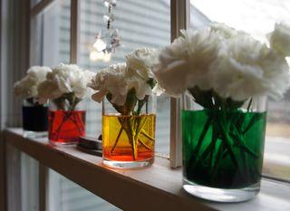 Magicflowers