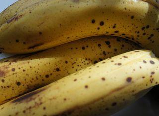 Bananas for b week