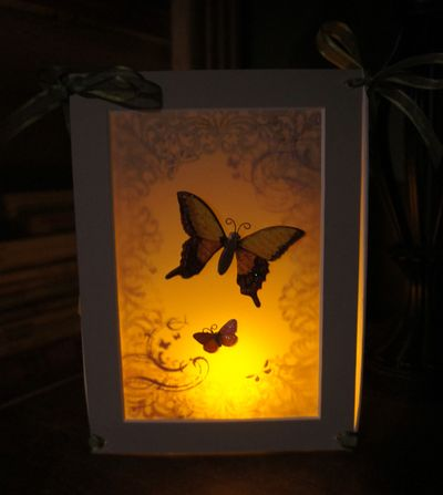 Butterfly lantern at night