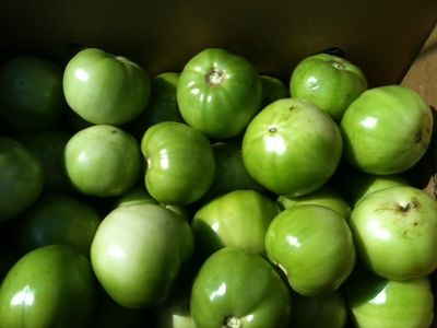 Green tomatoes 1