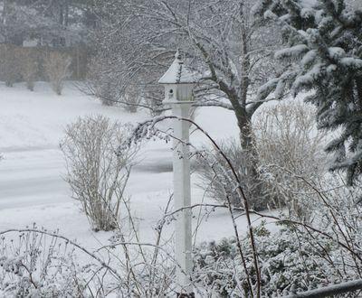 Blizzard birdhouse 4