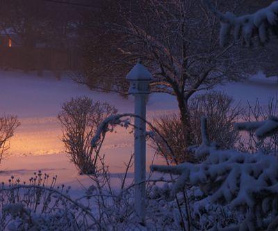 Blizzard birdhouse 6