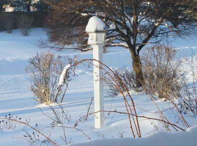 Blizzard birdhouse 12