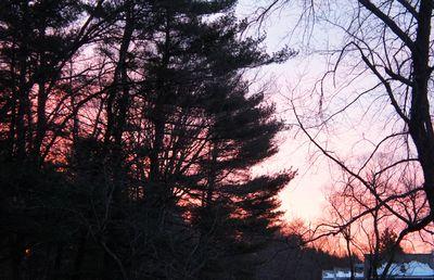 Easter egg pink sunrise