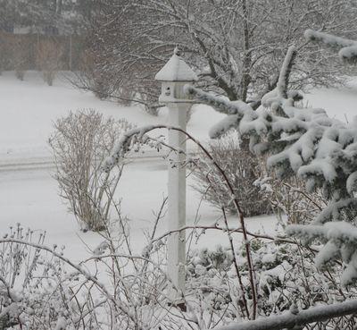 Blizzard birdhouse 5