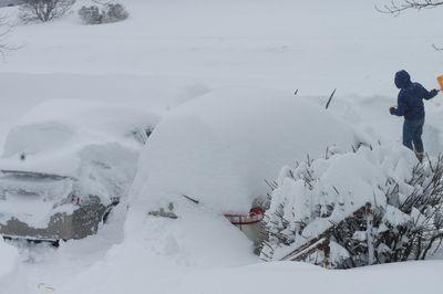 Blizzard morning 9