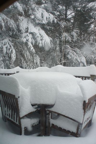 Blizzard morning 4