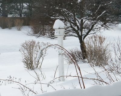 Blizzard birdhouse 11