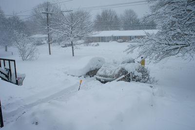 Snow again 1