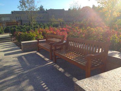 Bc bench in sunlight