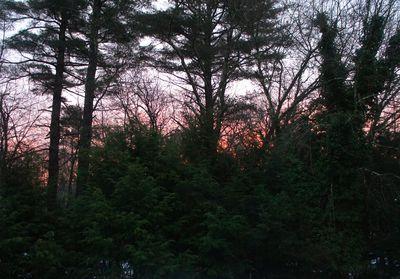Advent peace sunrise