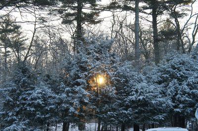 Snowy sunrise 2