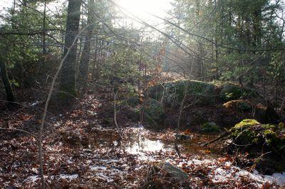 Icy creek 2