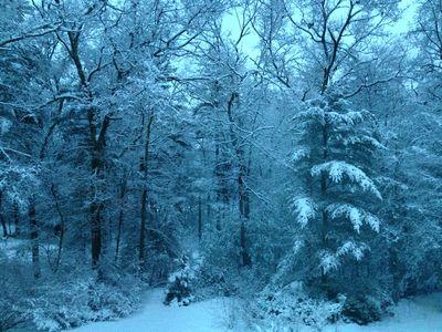 Snowy sunday morning