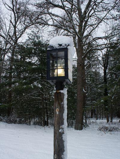 Snowy lamppost
