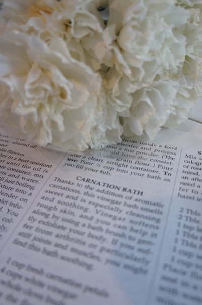 Carnation bath 1