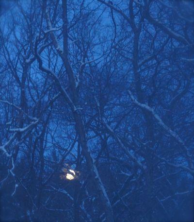 Snow moon 1