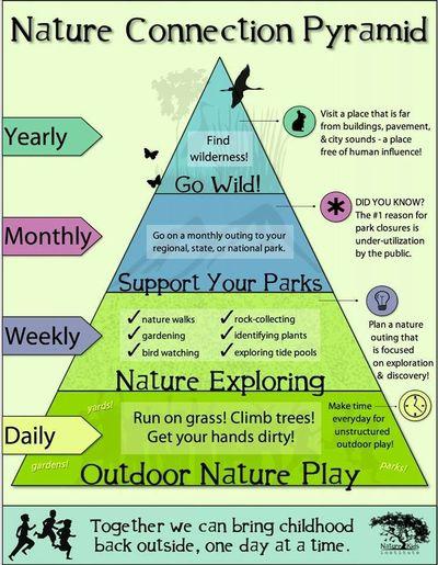 Nature pyramid