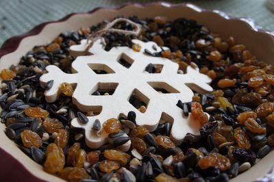 Seed snowflake 11