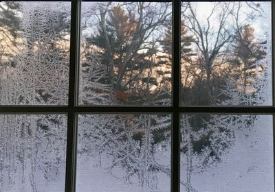 Frosty sunrise window