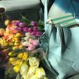 Easter errands ...