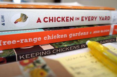 Chicken books