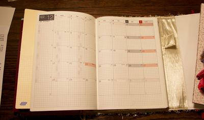 Planner party mic 4