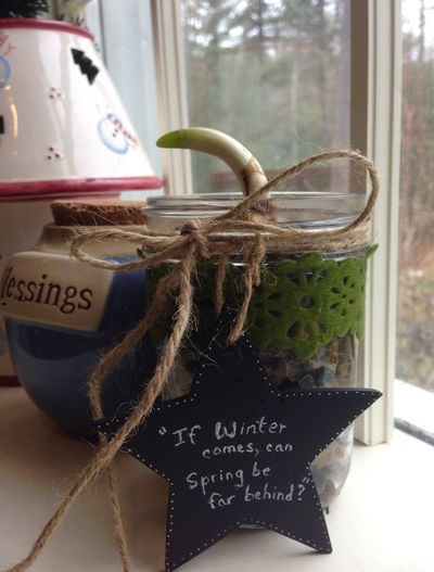 Advent tea winter 12