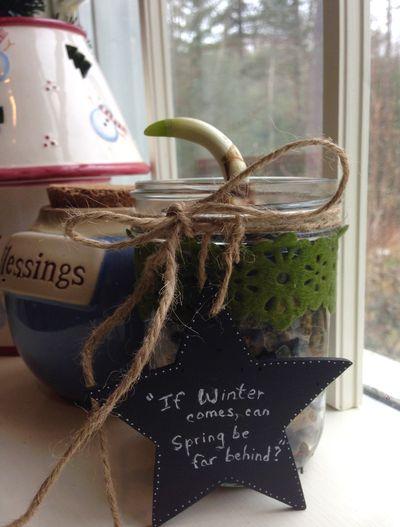Advent tea winter 12