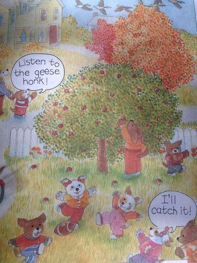 Autumn days book
