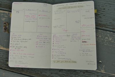 Planner party amy 6