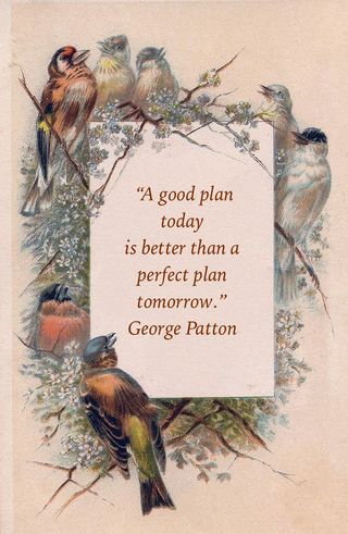 Good plan today quote
