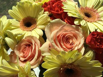 Sunny easter flowers