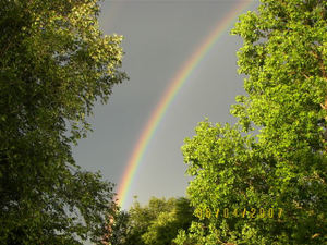 Marcies_rainbow2