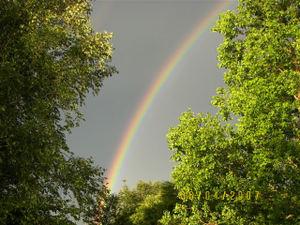 Marcies_rainbow2