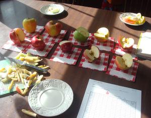 Apples7