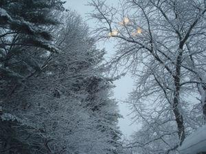 Snowpics8