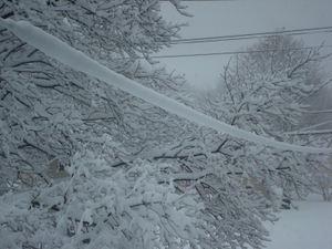Snowstorm4