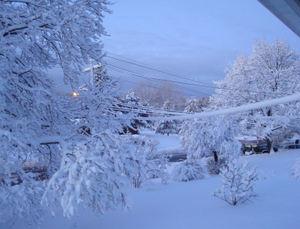Snowstorm20