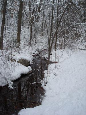 Snowywoods2