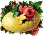 Yelloweggflower_2