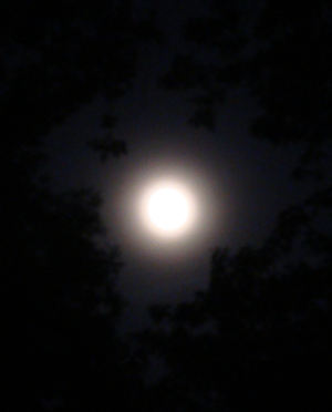 Moonring
