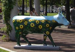 City_cow2